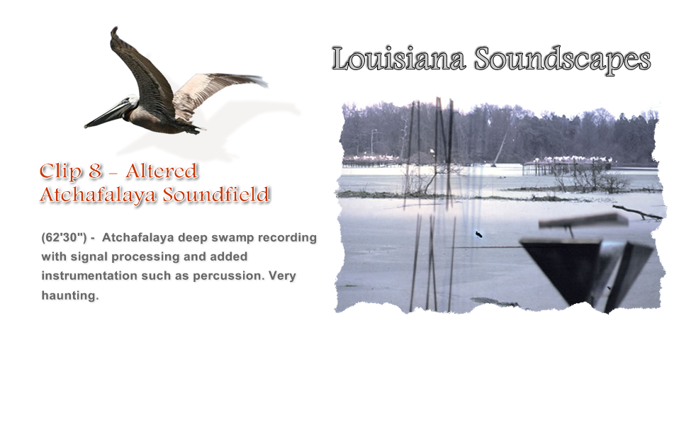 Altered Atchafalaya Soundfield